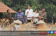 Ini Capaian 4 Tahun Pemerintahan Joko Widodo - Jusuf Kalla - JPNN.com