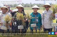 Peningkatan Mutu Benih Penting untuk Dorong Produksi Pangan - JPNN.com