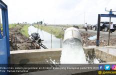 Polder Mini, Sistem Pengelolaan Air Lahan Rawa di HPS 2018 - JPNN.com