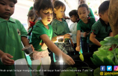 Begini Cara Mudah Ajarkan Anak Menyukai Buah dan Sayur - JPNN.com
