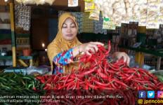 Harga Cabai Merah Besar Anjlok, Petani Merana - JPNN.com