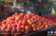 Astaga Harga Tomat Anjlok Parah, Petani Hanya Bisa Gigit Jari - JPNN.com