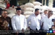 Pantau Beras, Mentan & Pak Buwas Gelar Sidak di 2 Pasar - JPNN.com