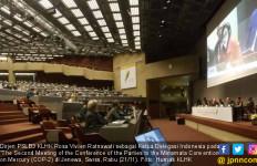 Indonesia Sampaikan Strategi Hapus Merkuri di COP-2 Jenewa - JPNN.com