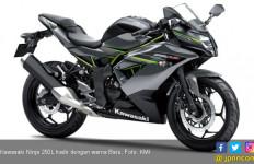 Kawasaki Ninja 250L Ada Warna Baru, Harga Rp 36,8 Juta Saja - JPNN.com