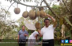 Dengan Kebijakan Mentan Amran, Durian Kini Surplus 733 Ton - JPNN.com