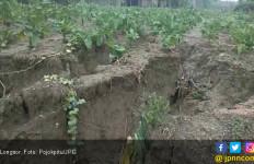Hujan Deras Akibatkan Lahan Pertanian Longsor - JPNN.com