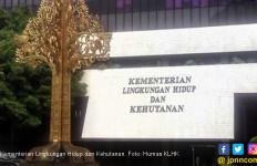 3,5 Tahun, Gakkum KLHK Amankan Rp 19 Triliun, Rekor! - JPNN.com