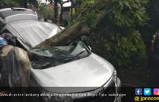 Video Detik - Detik Puting Beliung di Kota Bogor - JPNN.com