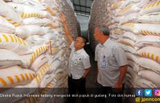 Seperti Ini Jurus Jitu Pupuk Indonesia Tekan Konsumsi Gas - JPNN.com