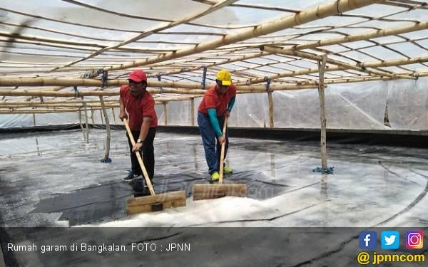 Pemerintah Diminta Segera Stabilkan Harga Garam Konsumsi - JPNN.com