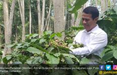 Kementan Fokus Benahi Sektor Perkebunan Indonesia - JPNN.com