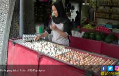 Warga Tak Perlu Khawatir Isu Telur Ayam Terpapar Limbah Plastik - JPNN.com