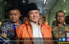 Bupati Nonaktif Lamsel Zainudin Hasan Divonis 12 Tahun Penjara - JPNN.com