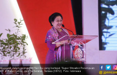 Megawati: Hari Ibu adalah Perayaan Gerakan Politik Perempuan - JPNN.com