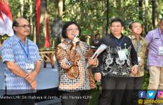 Masyarakat Adat Jambi Turut Nikmati Perhutanan Sosial - JPNN.com