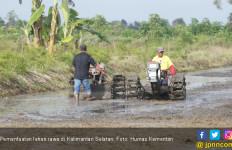 Kementan Proyeksikan Kalsel Jadi Lumbung Pangan di Luar Jawa - JPNN.com