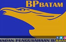Pengamat: Peleburan Kepemimpinan BP Batam Salah Kaprah - JPNN.com