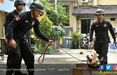 Puluhan Korban Longsor Belum Ditemukan Anjing Pelacak - JPNN.com