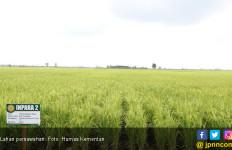 Ditjen PSP Kementan Segera Bentuk BLU Pembiayaan Pertanian - JPNN.com