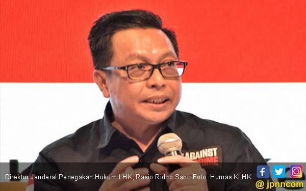 KLHK Berhasil Bawa 567 Kejahatan Lingkungan ke Pengadilan - JPNN.com