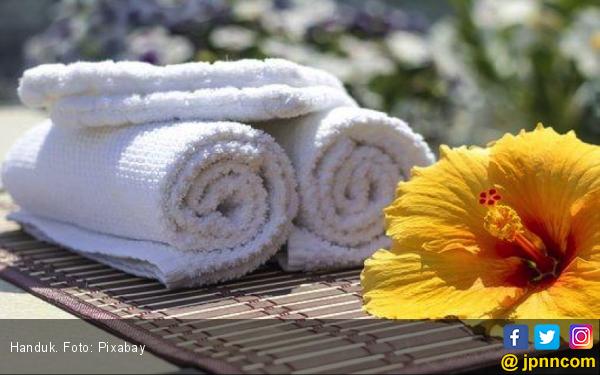 Kapan Terakhir Mencuci Handuk Mandi? Waspada Bakteri - JPNN.com