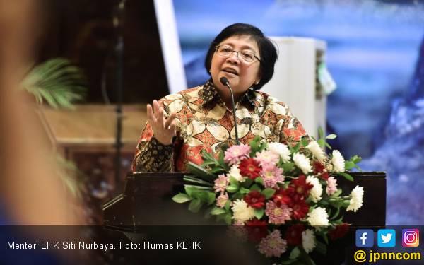 2019, Menteri Siti Minta Jajaran Lanjutkan Corrective Action - JPNN.com