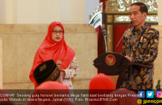 Curhat Bu Mega ke Presiden Jokowi soal Sulitnya Sertifikasi - JPNN.com