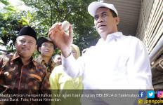 Produksi Telur dan Ayam Surplus, Kementan Dorong Peningkatan Ekspor - JPNN.com