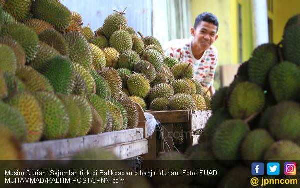 Jangan Takut Makan Durian, Simak nih Penjelasan Pakar Gizi - JPNN.com