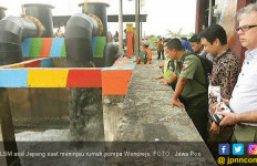 LSM Jepang Siap Bantu Penataan Mangrove di Surabaya - JPNN.com