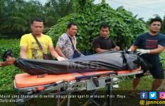 Heboh Penemuan Mayat di Semak-semak Pinggir Jalan Raya - JPNN.com