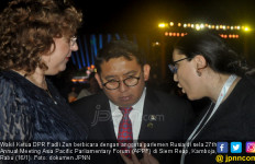 Fadli Zon Beber Minat Banyak Negara Pantau Pemilu Indonesia - JPNN.com