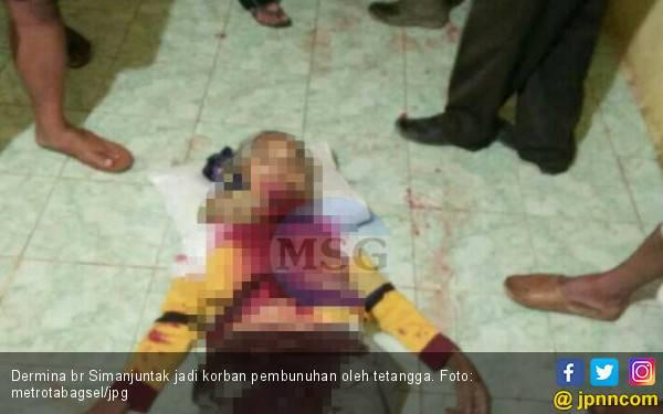 Pembunuhan Sekeluarga di Taput, Nenek Tewas, 3 Cucu Ditusuk - JPNN.com
