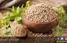 Benarkah Ketumbar Bisa Bantu Turunkan Kadar Kolesterol? - JPNN.com