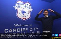 Pesawat Hilang, Pemain Baru Cardiff City Diduga Jadi Korban - JPNN.com