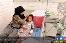 Waspada, Sudah 49 Warga Menderita Demam Berdarah - JPNN.com