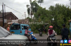 Sedang Naik Becak, Vanessa Ketiban Pohon Asem - JPNN.com
