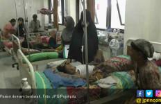 Mayoritas Pasien Demam Berdarah Dewasa Opname - JPNN.com