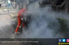 Efektivitas Fogging Mengatasi Demam Berdarah? - JPNN.com