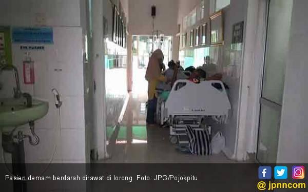 Pasien Demam Berdarah Membeludak, Sebagian Dirawat di Lorong RS - JPNN.com