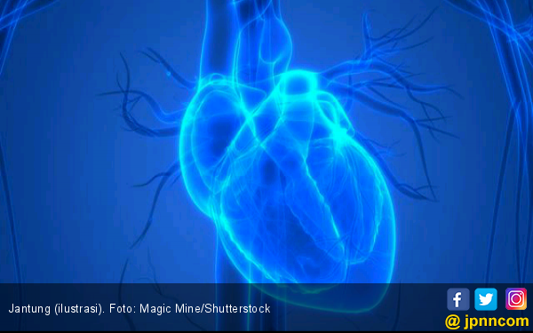 Waspada 4 Faktor ini Bisa Memengaruhi Penyakit Jantung - JPNN.com