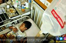 Pertolongan Pertama Saat Terserang Demam Berdarah - JPNN.com
