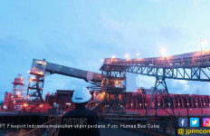Bea Cukai Dorong Ekspor Perdana PT Freeport Indonesia PascaDivestasi Saham - JPNN.com
