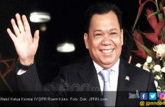 DPR Ingatkan Menko Darmin Jangan Lagi Impor Jagung - JPNN.com