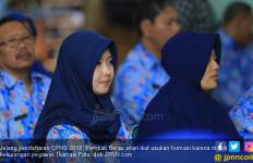Pendaftaran CPNS 2019: Pemkab Ingin dapat Tambahan 1.000 Pegawai - JPNN.com