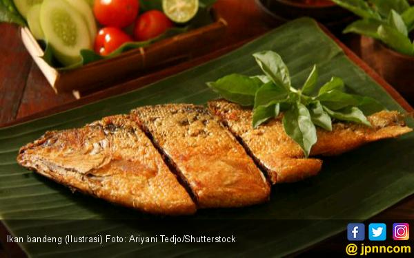Ikan Bandeng, Hidangan Sehat Saat Imlek - JPNN.com