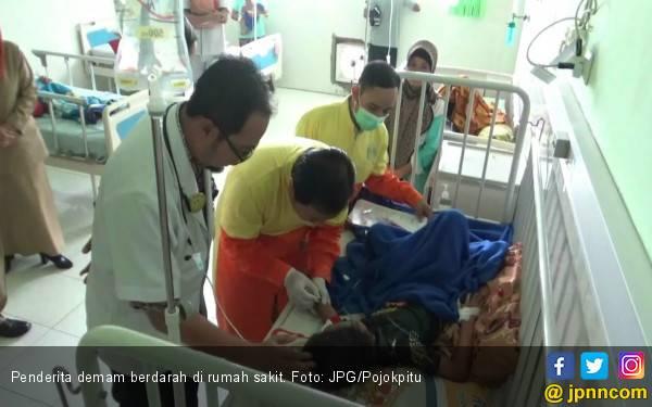 Waspada! 327 Warga Terjangkit Demam Berdarah - JPNN.com