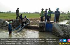 Lahan Dilanda Banjir, Kementan Ajak Petani Grobogan Gunakan Asuransi - JPNN.com