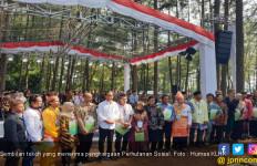 9 Orang Ini Terima Penghargaan sebagai Tokoh Tani Hutan Sosial - JPNN.com